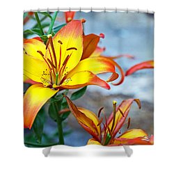 Lilies Of The Field #1 Shower Curtain