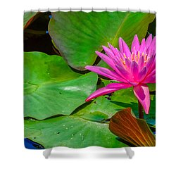 Lilies Of The Field 2 Shower Curtain