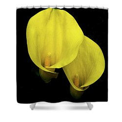 Lilies Out Of The Dark Shower Curtain