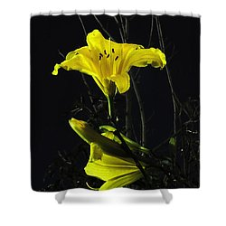 Lilly In The Evening Shower Curtain
