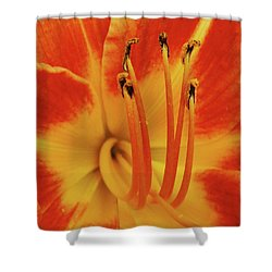 Lilly Macro Shower Curtain by Michael Peychich