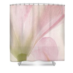 Lilly On Canvas Shower Curtain