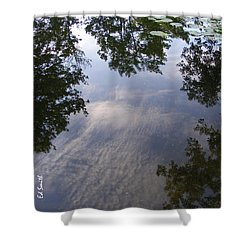 Lilly Pad Reflections Shower Curtain by Ed Smith