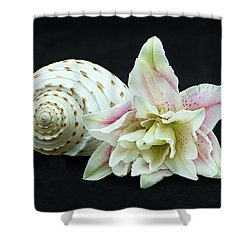 Lily And Shell Shower Curtain