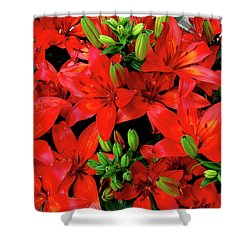 Shower Curtain featuring the photograph Lily Blossoms by LeeAnn McLaneGoetz McLaneGoetzStudioLLCcom