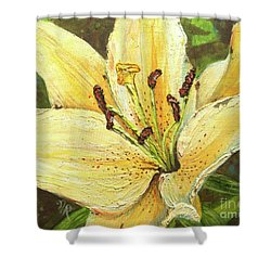 Lily Dream Shower Curtain
