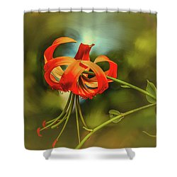 Shower Curtain featuring the photograph Lily #h8 by Leif Sohlman