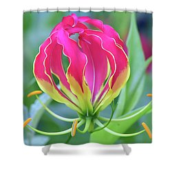 Lily In Flames Shower Curtain