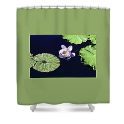 Lily Love II Shower Curtain by Suzanne Gaff