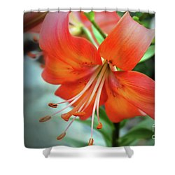 Lily Love Shower Curtain