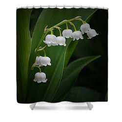 Lily Of The Valley 2 Shower Curtain