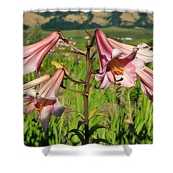 Lily Of The Valley Shower Curtain by Athena Mckinzie