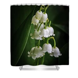 Lily Of The Valley Bouquet Shower Curtain