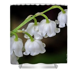 Lily Of The Valley Flowers Shower Curtain