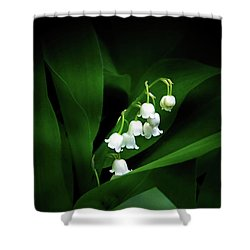 Lily Of The Valley Shower Curtain by Judy Johnson