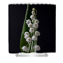 Lily Of The Valley On Black Shower Curtain