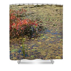 Lily Pad Lace Shower Curtain