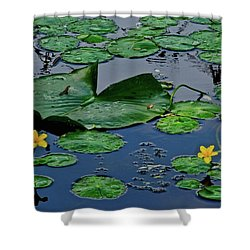 Shower Curtain featuring the photograph Lily Pad Pond by Frozen in Time Fine Art Photography