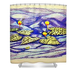 Lily Pad Pond Shower Curtain