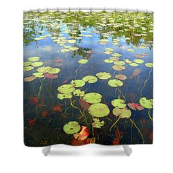 Lily Pads And Reflections Shower Curtain