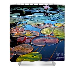 Lily Pads At Sunset Shower Curtain by Kaye Menner