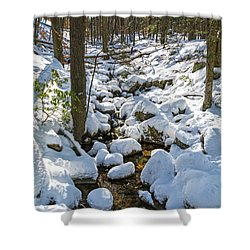 Lily Pads Of Snow Shower Curtain by Angelo Marcialis