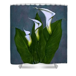 Shower Curtain featuring the painting White Calla Lilies by Peter Piatt