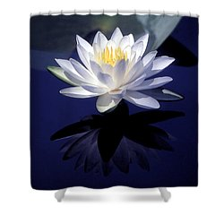 Lily Reflection Shower Curtain