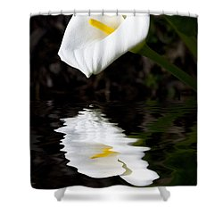 Lily Reflection Shower Curtain by Avalon Fine Art Photography