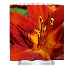 Lily Shadows Shower Curtain