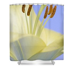 Lily Stamens  Shower Curtain