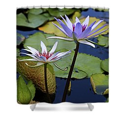 Shower Curtain featuring the photograph Lily Trio by Judy Vincent
