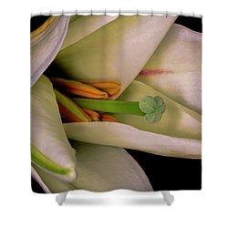 Lily White Shower Curtain by Roy McPeak