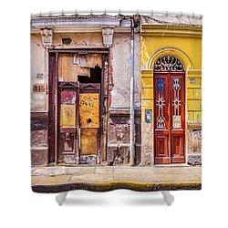 Lima City Doors Shower Curtain