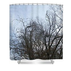 Limbs In Air Shower Curtain by Jewel Hengen