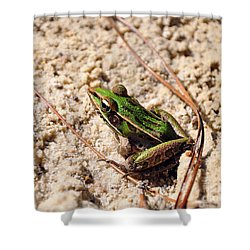 Shower Curtain featuring the photograph Lime-like by Al Powell Photography USA