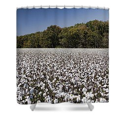 Limestone County Alabama Cotton Crop Shower Curtain