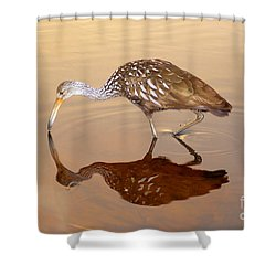 Limpkin In The Mirror Shower Curtain by David Lee Thompson