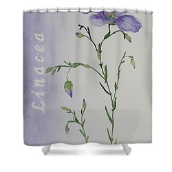 Linacea Shower Curtain by Ruth Kamenev