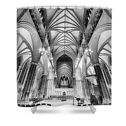 Lincoln Cathedral Bw Shower Curtain
