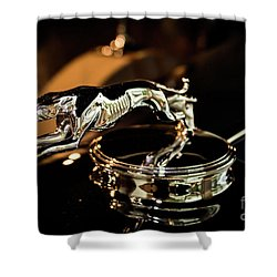 Lincoln Greyhound Hood Ornament Shower Curtain
