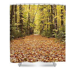 Lincoln Woods Trail  - White Mountains New Hampshire Shower Curtain