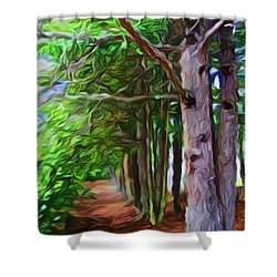 Lincoln's Path Shower Curtain by Joan Reese
