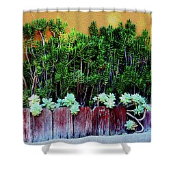 Line Of Succulents And Red Fence Shower Curtain