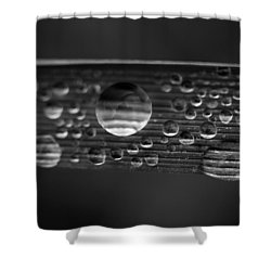 Linear Universe 2 Shower Curtain