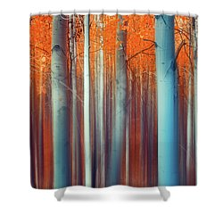 Lines Of Autumn Shower Curtain by John De Bord