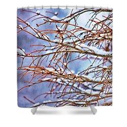 Lingering Winter Snow Shower Curtain