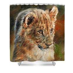 Shower Curtain featuring the painting Lion Cub Portrait by David Stribbling