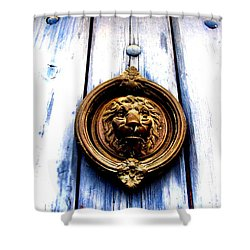 Lion Dreams Shower Curtain