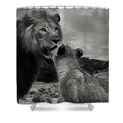 Shower Curtain featuring the photograph Lion Family Panorama by Christine Sponchia